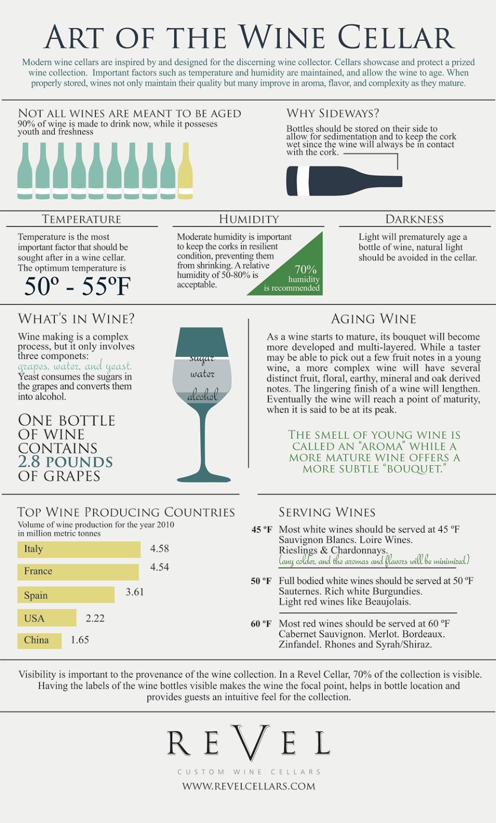 Wine Cellar Infographic