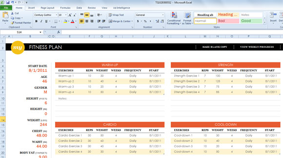 Excel Fitness Template